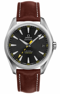 Omega Seamaster Aqua Terra Black Dial Men's Watch 231.12.42.21.01.001