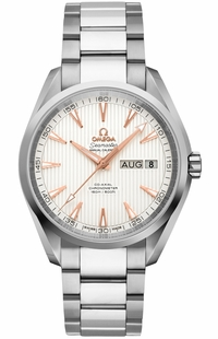 Omega Seamaster Aqua Terra Men's Watch 231.10.39.22.02.001