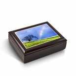 Natures Wonders - A Rainbow Is Born Tile Musical Jewelry Box