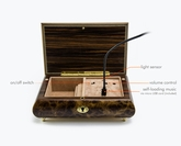 New Exclusive USB Rechargeable Custom Tune Module Music Boxes