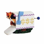 Special Delivery Kittens In Mailbox Hand Cranked Musical Figurine