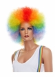 Rainbow Afro Wig inset 2