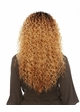Spiral Curl Lace Frotn Wig Maxie inset 2