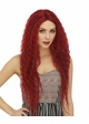 Swiss Lace Front Wig Raven inset 1