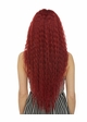 Swiss Lace Front Wig Raven inset 3