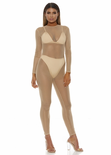 Tan Mesh Catsuit with Long Sleeves