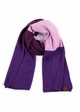 Ultra Soft Color Block CC Scarf inset 1