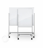 Visionary Move Mobile Magnetic Glassboard