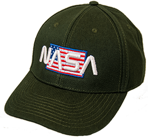 NASA Worm Logo Over American Flag Evergreen