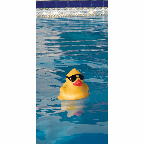GAME Derby Duck and Friends Pool and Spa Thermometer