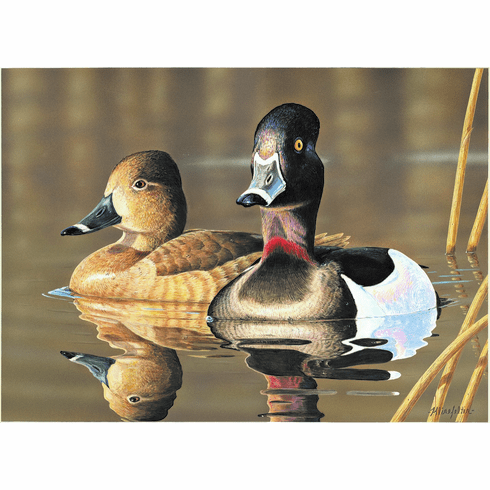 2019 N.C. Waterfowl<br>Conservation Adhesive Stamp