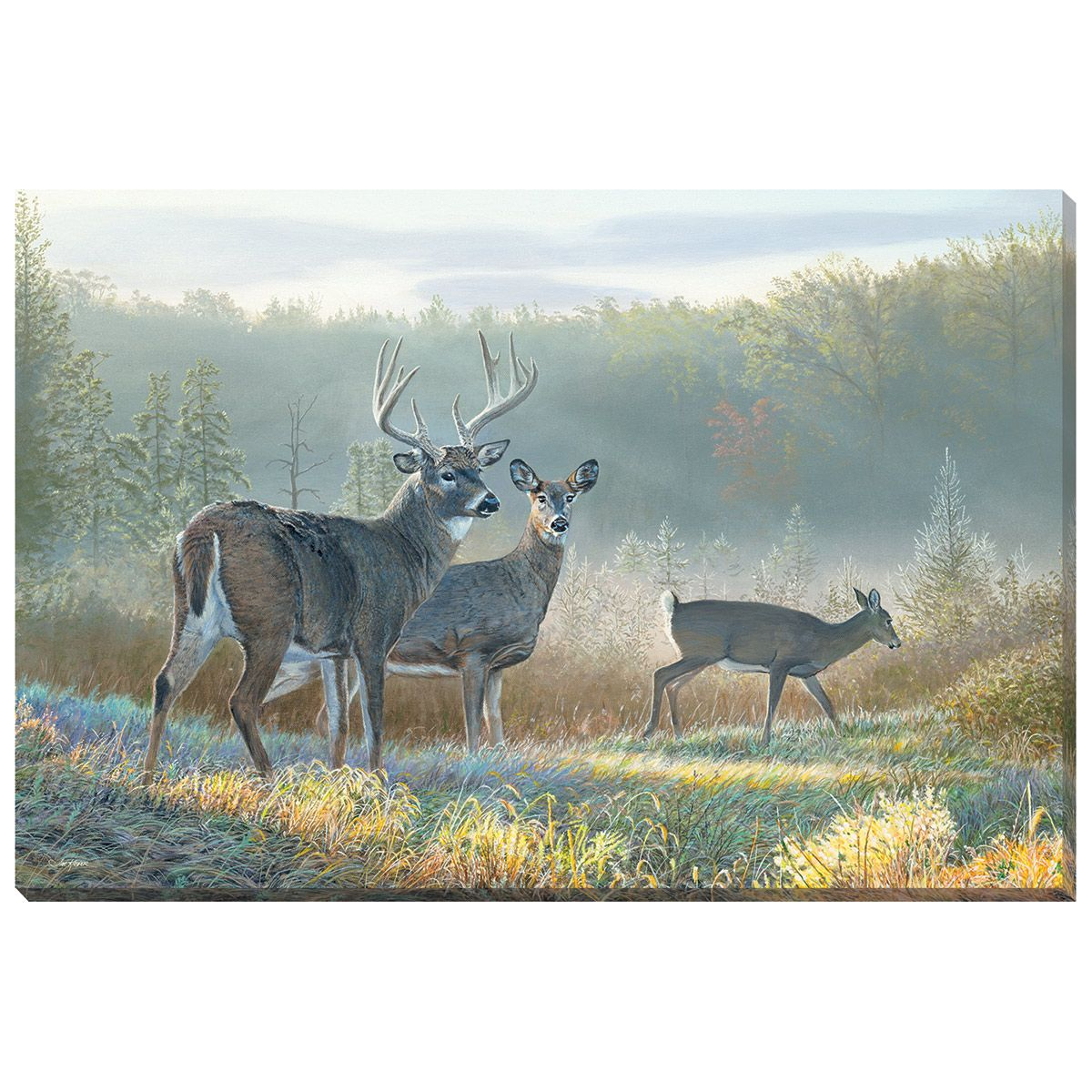 deer clearing canvas art