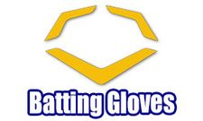 EvoShield Batting Gloves