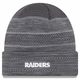 Raiders New Era 2017 Graphite TD Knit