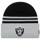 Raiders New Era Arctic Trim Knit