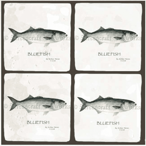 Bluefish Coasters
