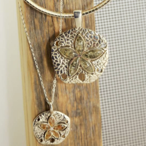Natural Sand Dollar Collection