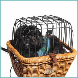 Pet Baskets & Carriers