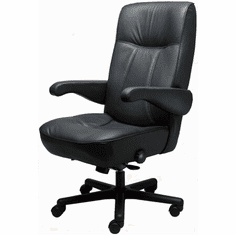 Miraculous Era Office Chairs Big And Tall Chairs Lifetime Warranty Short Links Chair Design For Home Short Linksinfo