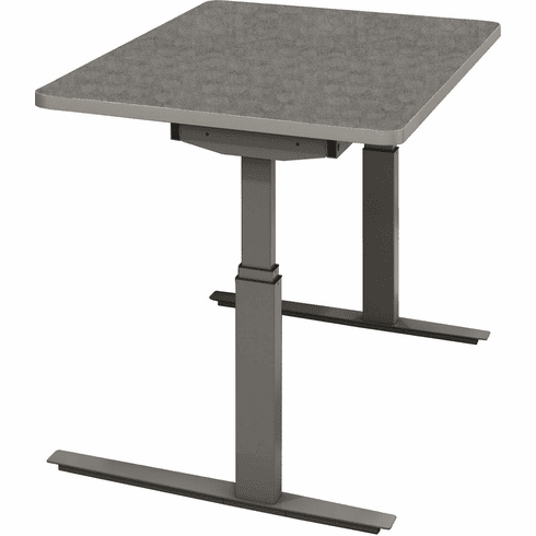 "Mayline RGE 48""x24"" Height Adjustable Table Pewter [8022448EHS5PE]"