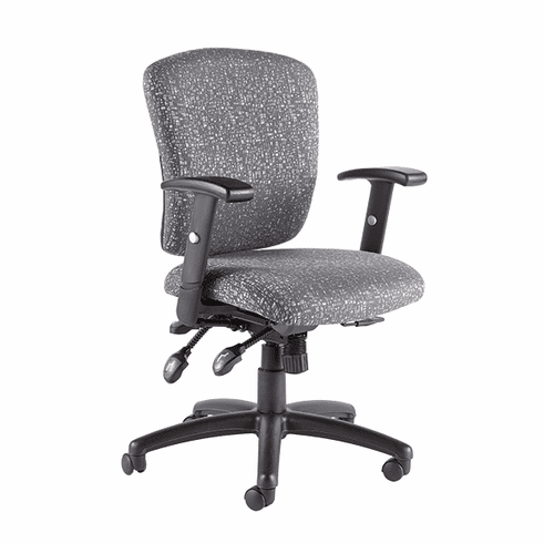 Talira Multifunction Task Chair with Adjustable Arms, Gray [TL250FGR]
