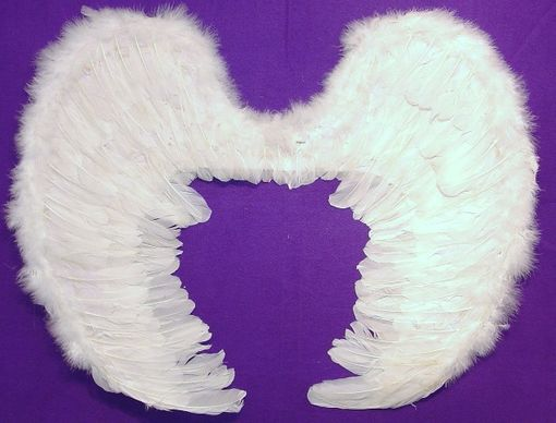 Angel Wings 28""