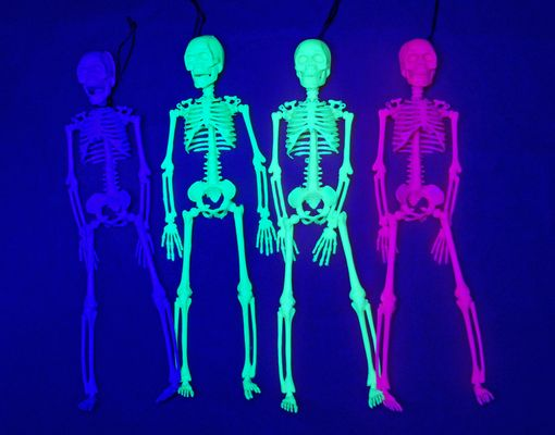 Black Light Halloween Skeleton Set 16""