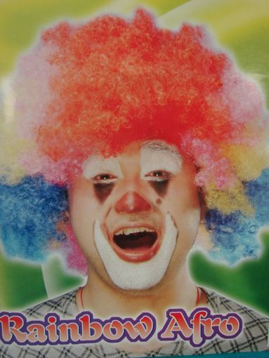 Clown Costume Wig