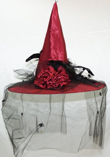 Halloween Witch Hat With Vail