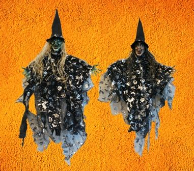 Halloween  Witch Prop