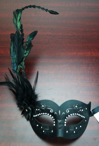Leather Feather Mask