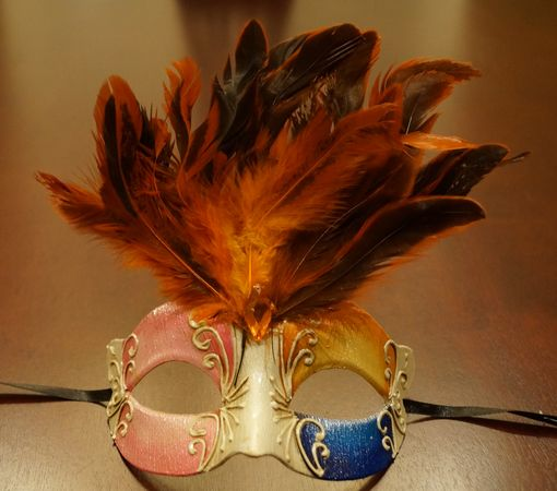 Maraca Orange Feather Mask