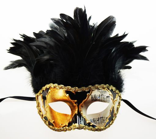 Men's Venetian Feather Mask