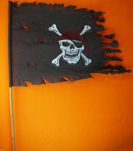 Pirate Flag 24""