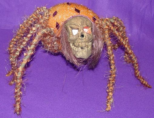 """Spider with Skull 8""""x13"""""""