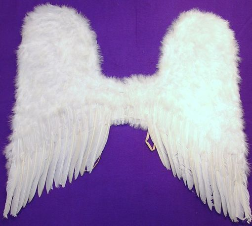 Victoria Angel Wings