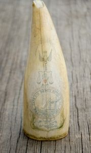 Antique Sperm Whale tooth with Barnstable MA Oddfellows Lodge Scrimshaw