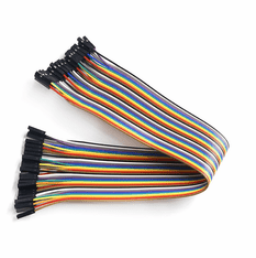 30cm Female - Female 40 Wire Dupont Cable