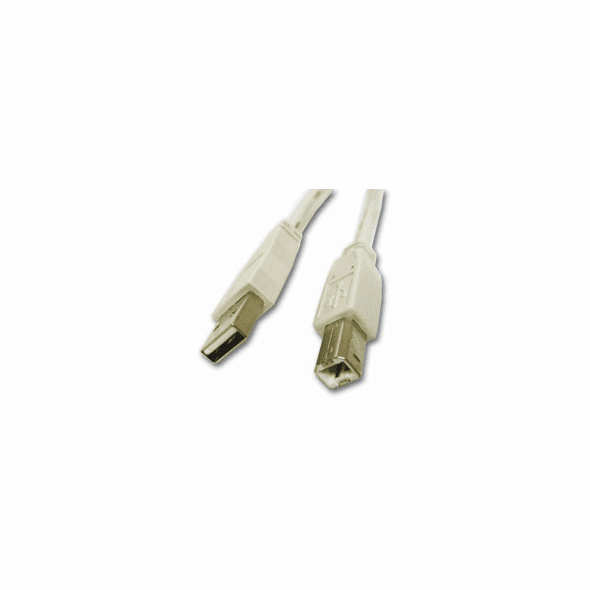 6 Inch USB 2.0 Type A Male to Type B Male Cable - Ivory