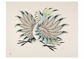 Aoudla Pudlat: Dancing Birds Boxed Notecards