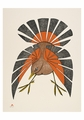 Aoudla Pudlat: Fall Plumage Small Boxed Cards