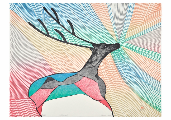 Caribou in Northern Lights Notecard