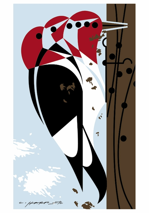 Charley Harper: Woodpeckers Notecard Folio