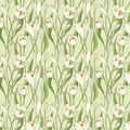 Crocuses Designer Gift Wrap