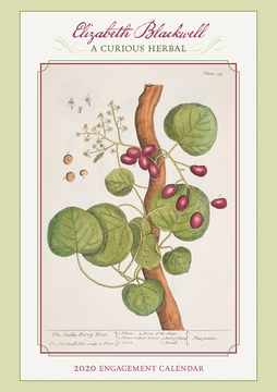 Elizabeth Blackwell: Curious Herbal 2020 Engagement Calendar