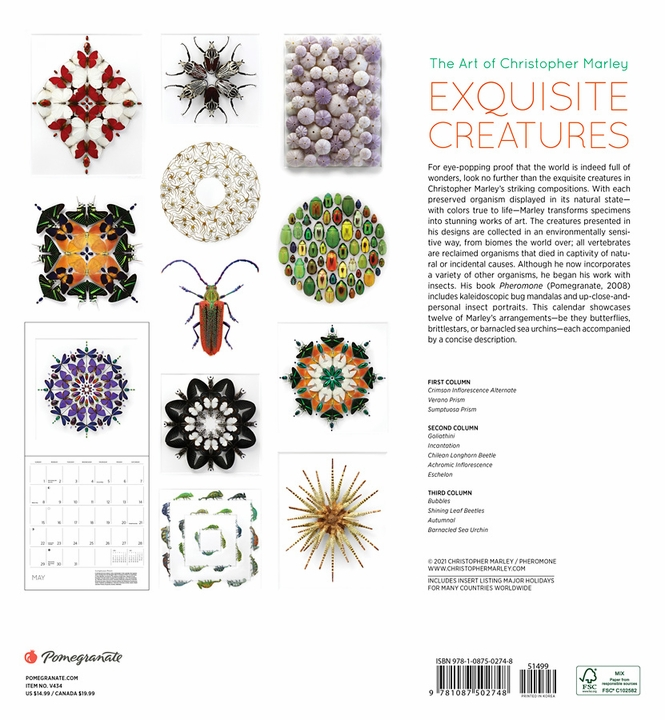 Exquisite Creatures: The Art of Christopher Marley 2022 Wall Calendar