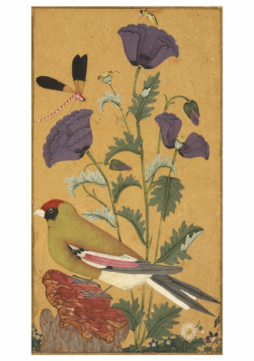 Finch, Poppies, Dragonfly, and Bee Notecard