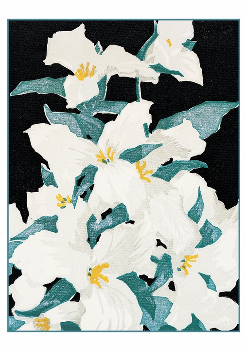 Franklin Carmichael: Flowers Notecard Folio