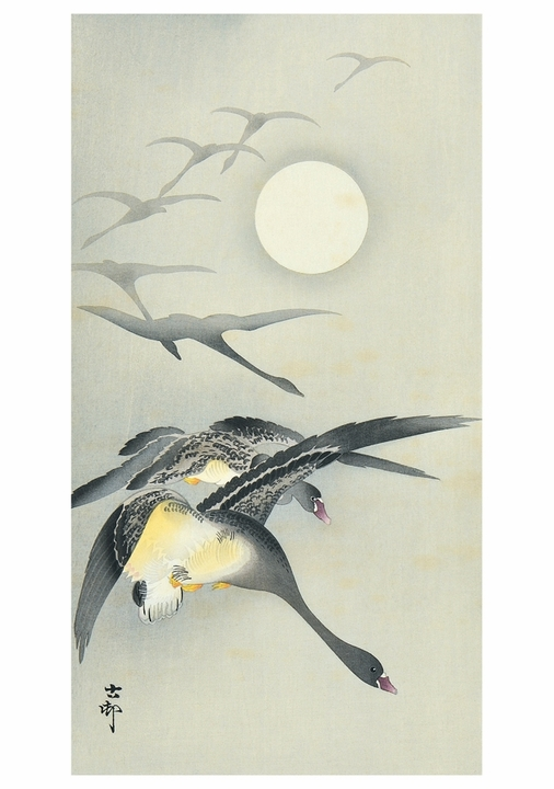 Ohara Shōson: Geese and the Moon Notecard
