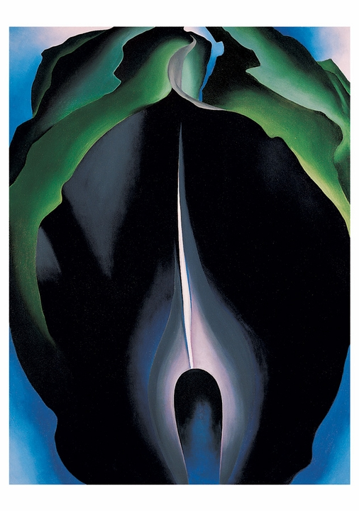 Georgia O'Keeffe: Jack-in-the-Pulpit Boxed Notecards